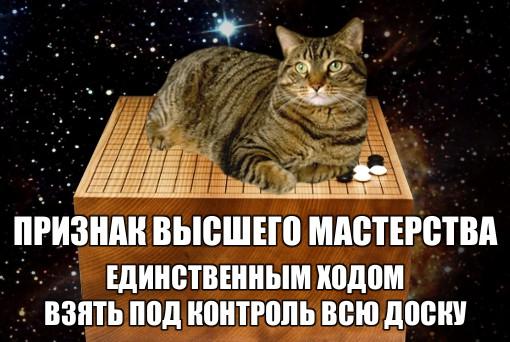 Конкурс картинок Го-котики